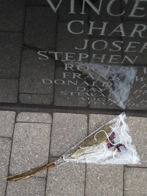 9.5.18  National Iwo Jima Memorial, Petrovics, 1995, New Britain, CT. Flowers left at honor roll.